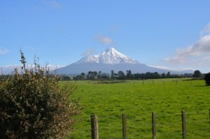 Great view of Mt. Taranaki from Cheal-C.