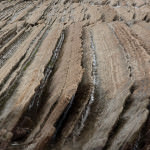 TAG Oil Shale